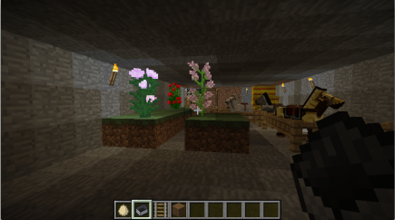 Taller flowers in the stable