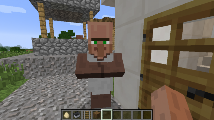 A villager observes me