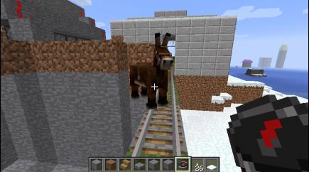 Hello, Donkey