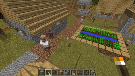 A house and garden